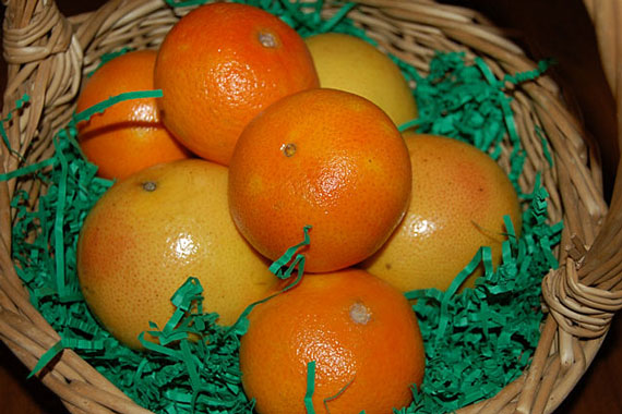 citrus fruit gift basket